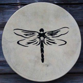 Voimaeläinrumpu sudenkorento
